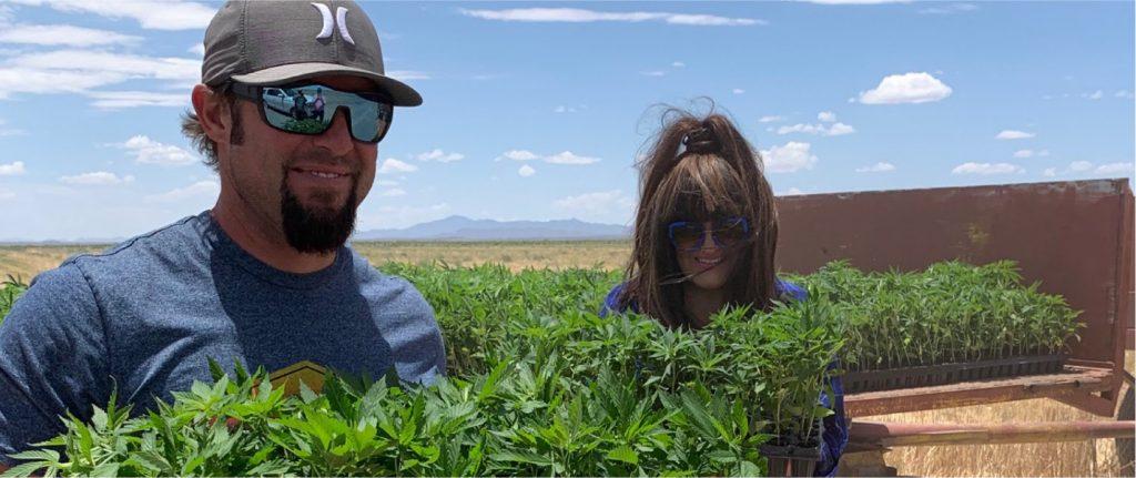 Organic Hemp Farmers