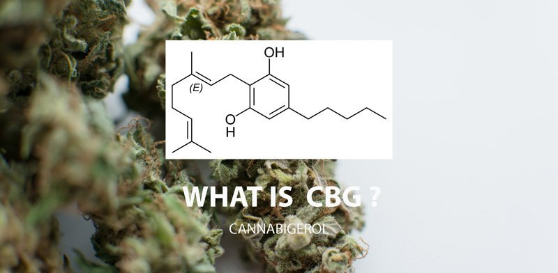 Chemical Make Up Of CBG