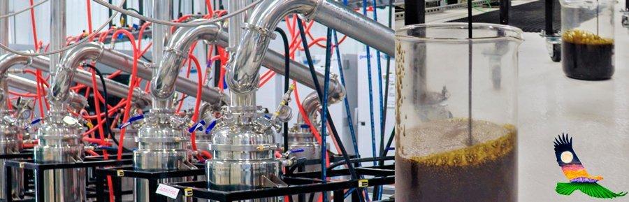 CBD Extraction Process