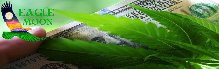 Grow Hemp It's A Cash Crop!