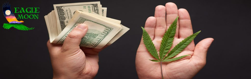 How To Make Money On Hemp