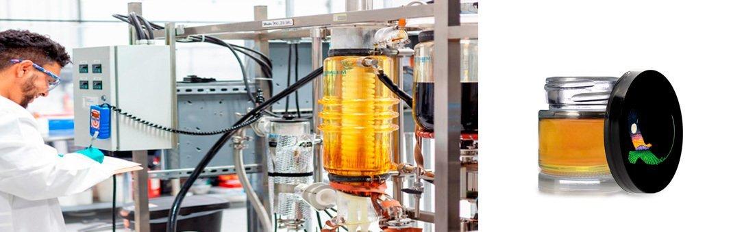 hemp distillate